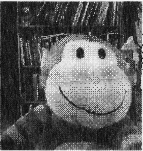 scan of printout of the monkey toy