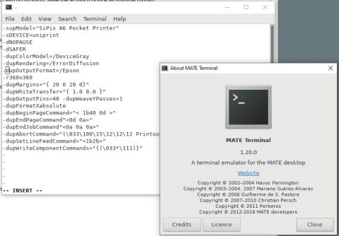 screen shot of a MATE terminal window