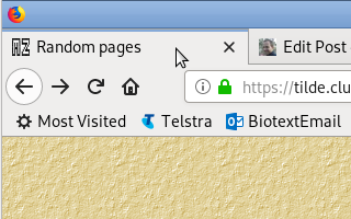 The icon appears on the tab in Firefox